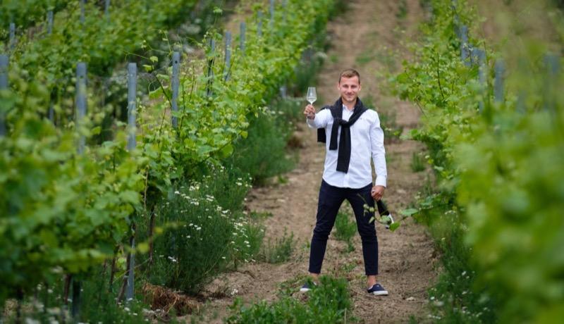 Vinařství Halkoci
